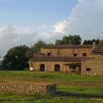 AGRITURISMO CASALINO